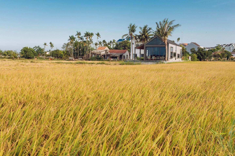 Khi có mảnh đất ở quê, đừng bỏ lỡ cơ hội xây ngôi nhà view cánh đồng lúa đắt giá như thế này - Ảnh 4.
