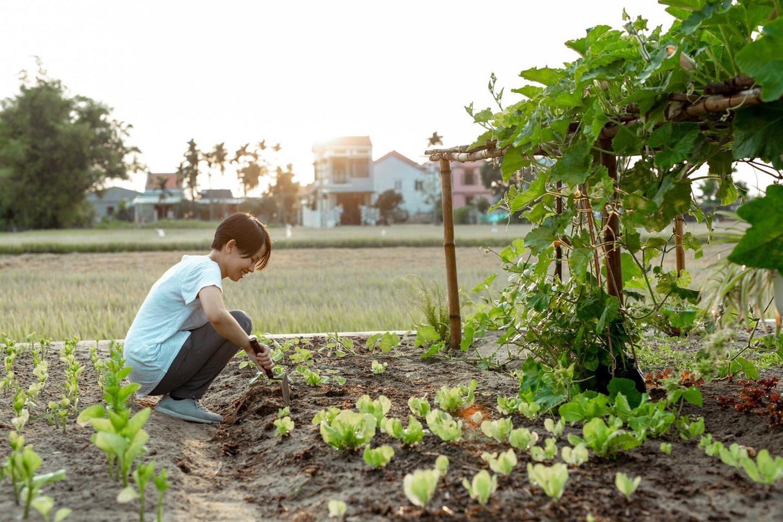 Khi có mảnh đất ở quê, đừng bỏ lỡ cơ hội xây ngôi nhà view cánh đồng lúa đắt giá như thế này - Ảnh 8.