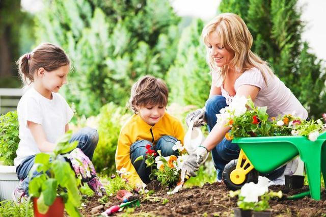 Trồng cây là hoạt động ngoài trời được các bé rất yêu thích